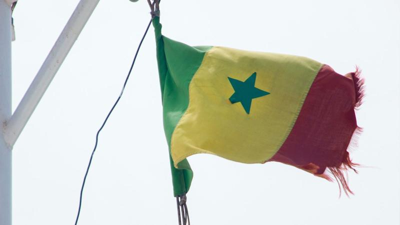 Vlag van Senegal